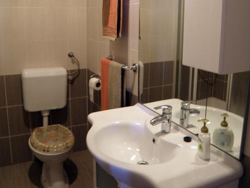 7884  - Jezera - Apartments Croatia - A1(2+2): bathroom with toilet