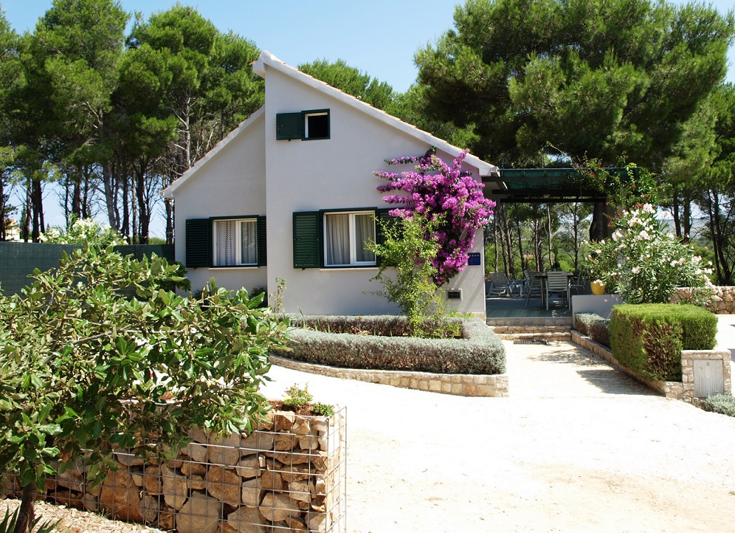 7289  - Baie Osibova (Milna) - Maisons de repos, villas Croatie