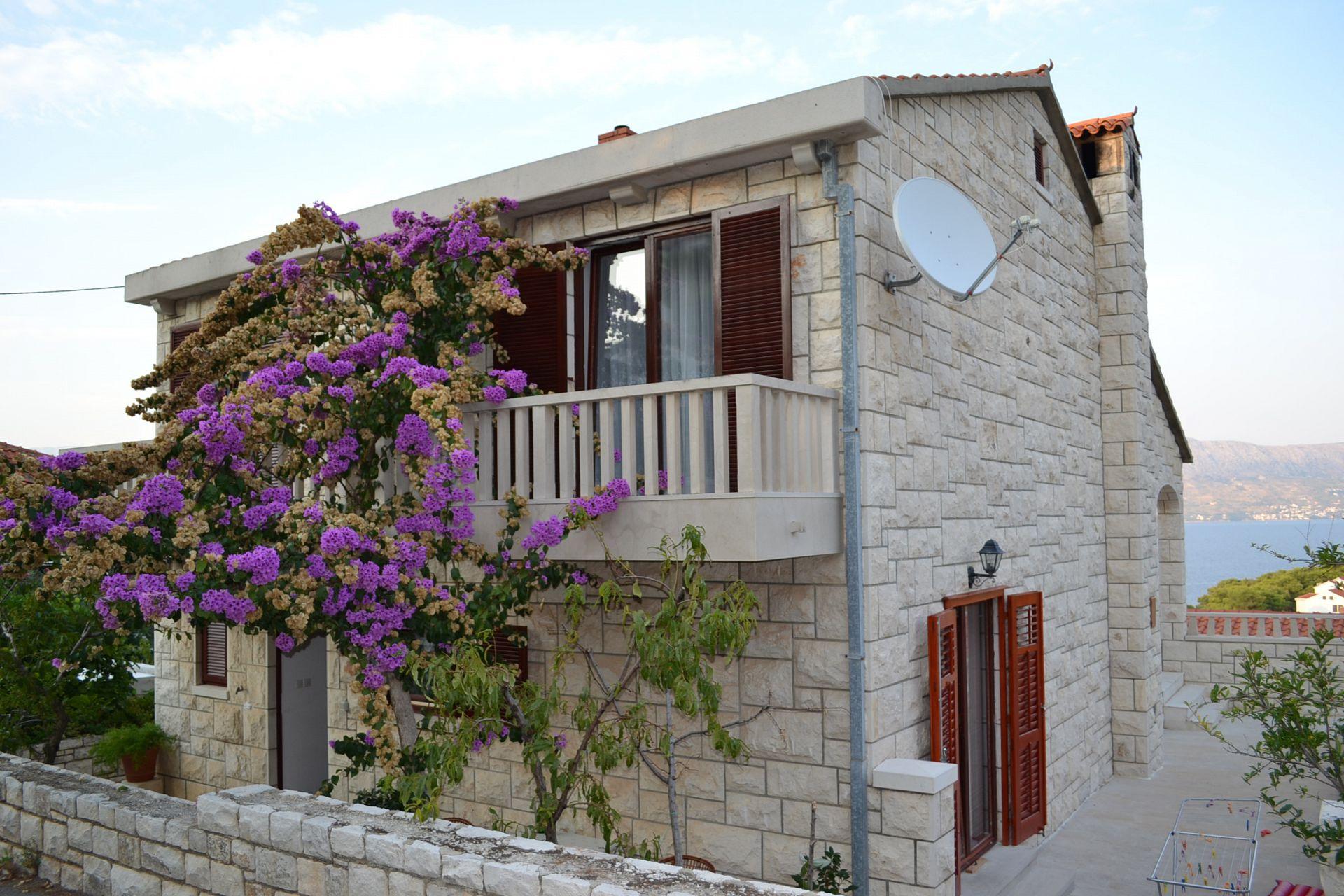 8055 - Postira - Appartements Croatie