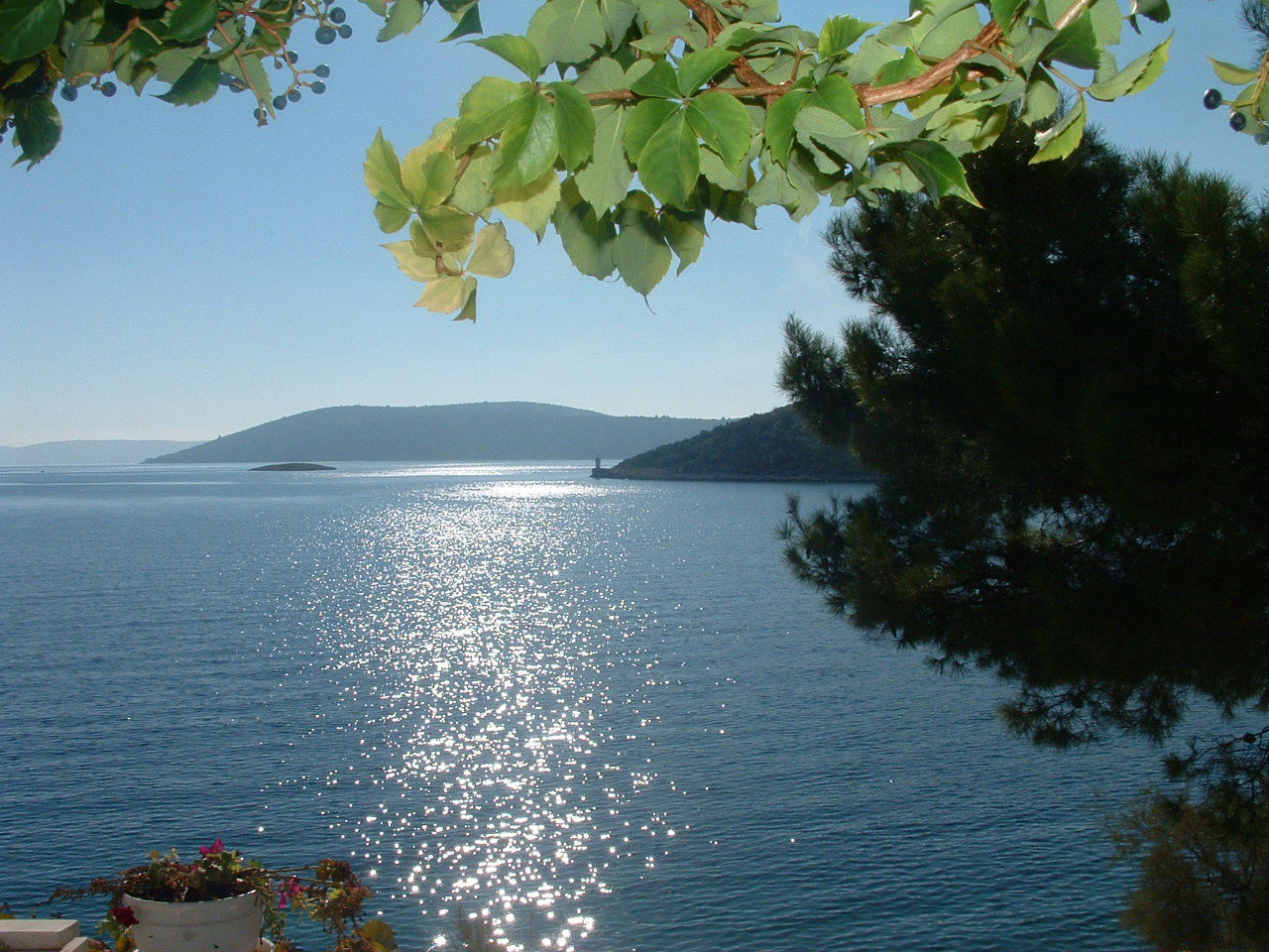 Ante Č - Vinisce - Appartementen Kroatië - uitzicht op zee (huis en omgeving)