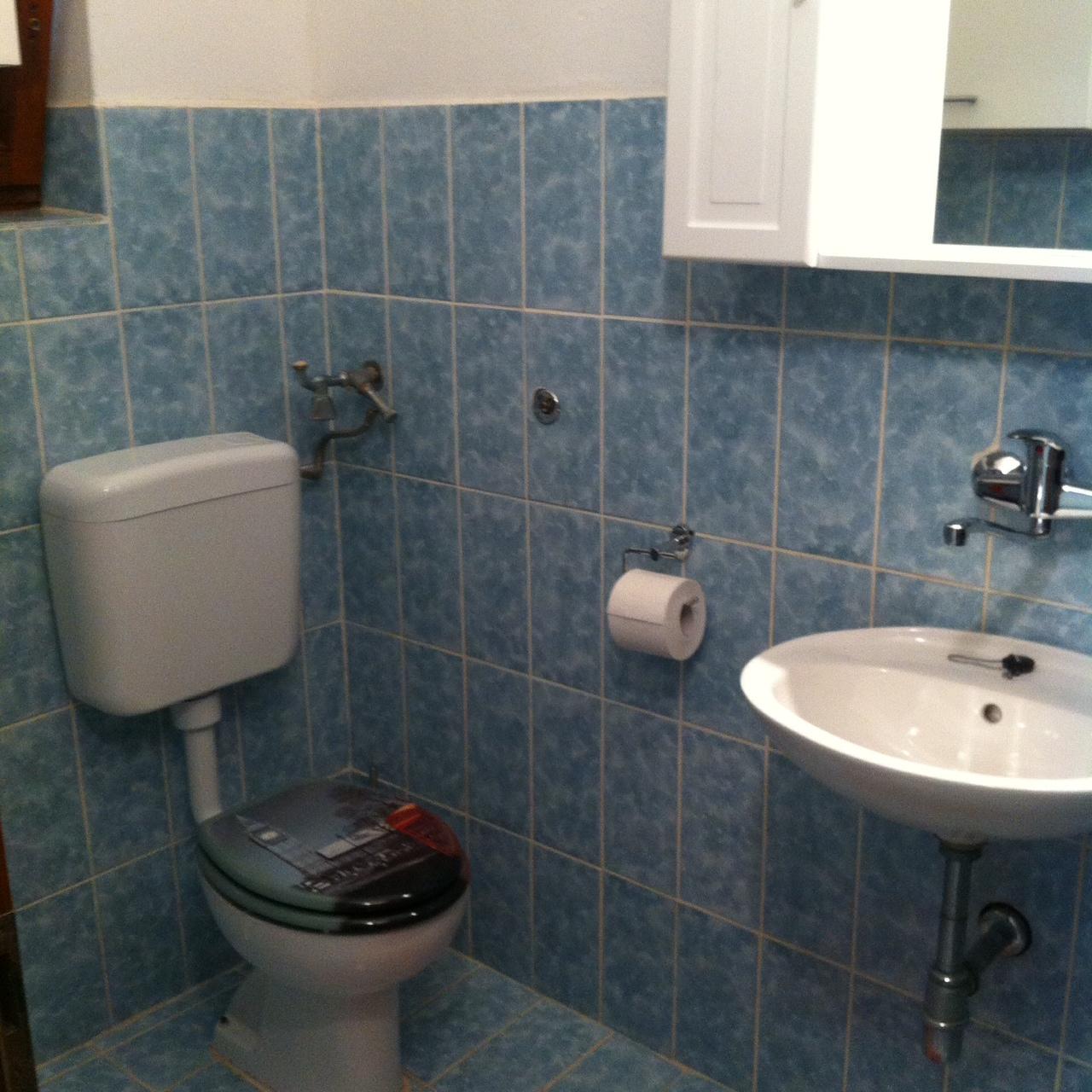 01010TISN - Tisno - Apartmaji Hrvaška - A1(4+1): kopalnica s straniščem