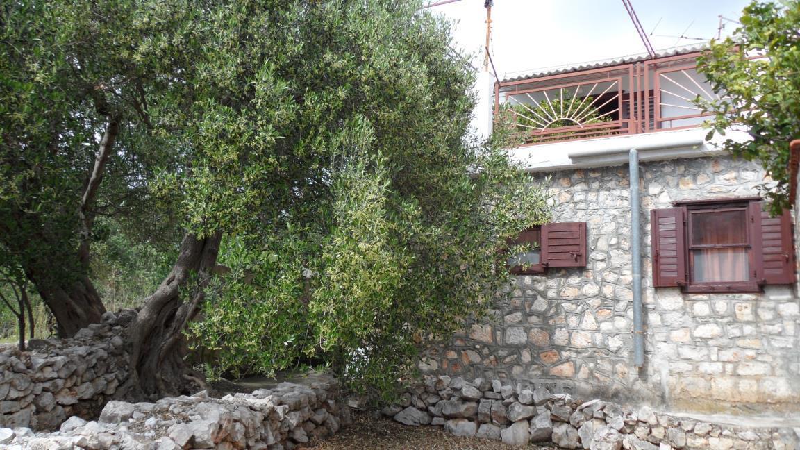 35704 - Drvenik Mali (Otok Drvenik Mali) - Kuće za odmor, vile Hrvatska
