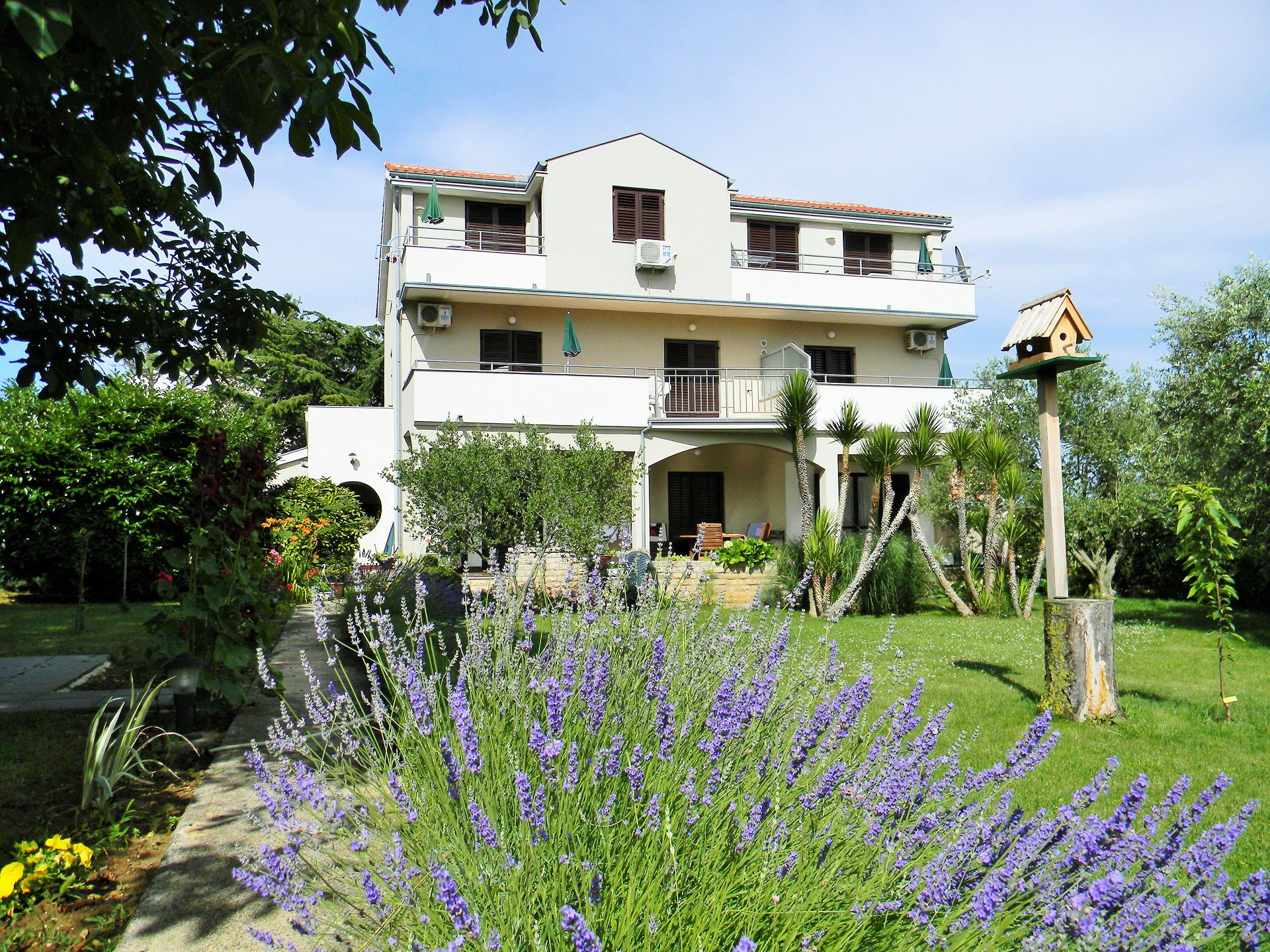 00418ZATZ - Zaton (Zadar) - Apartamenty Chorwacja