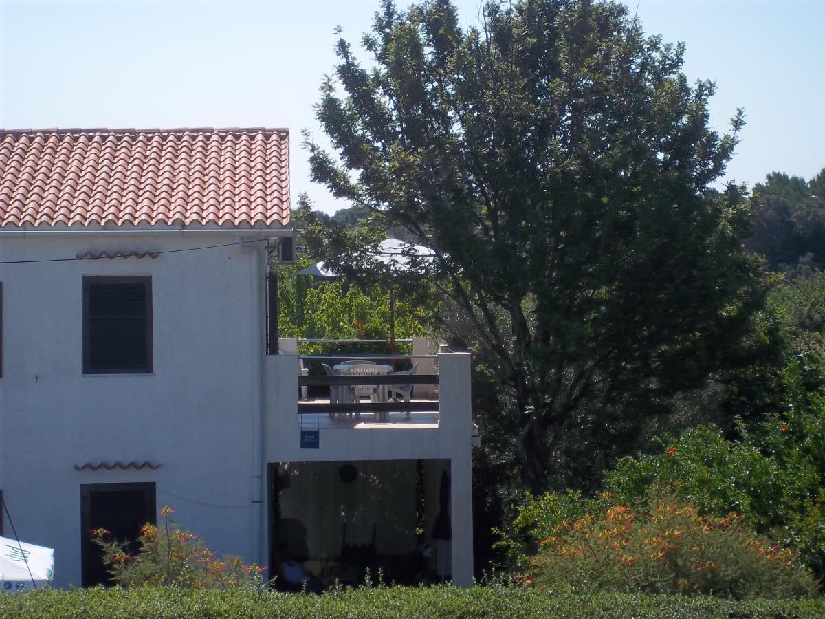 00218PETR - Petrcane - Apartamenty Chorwacja