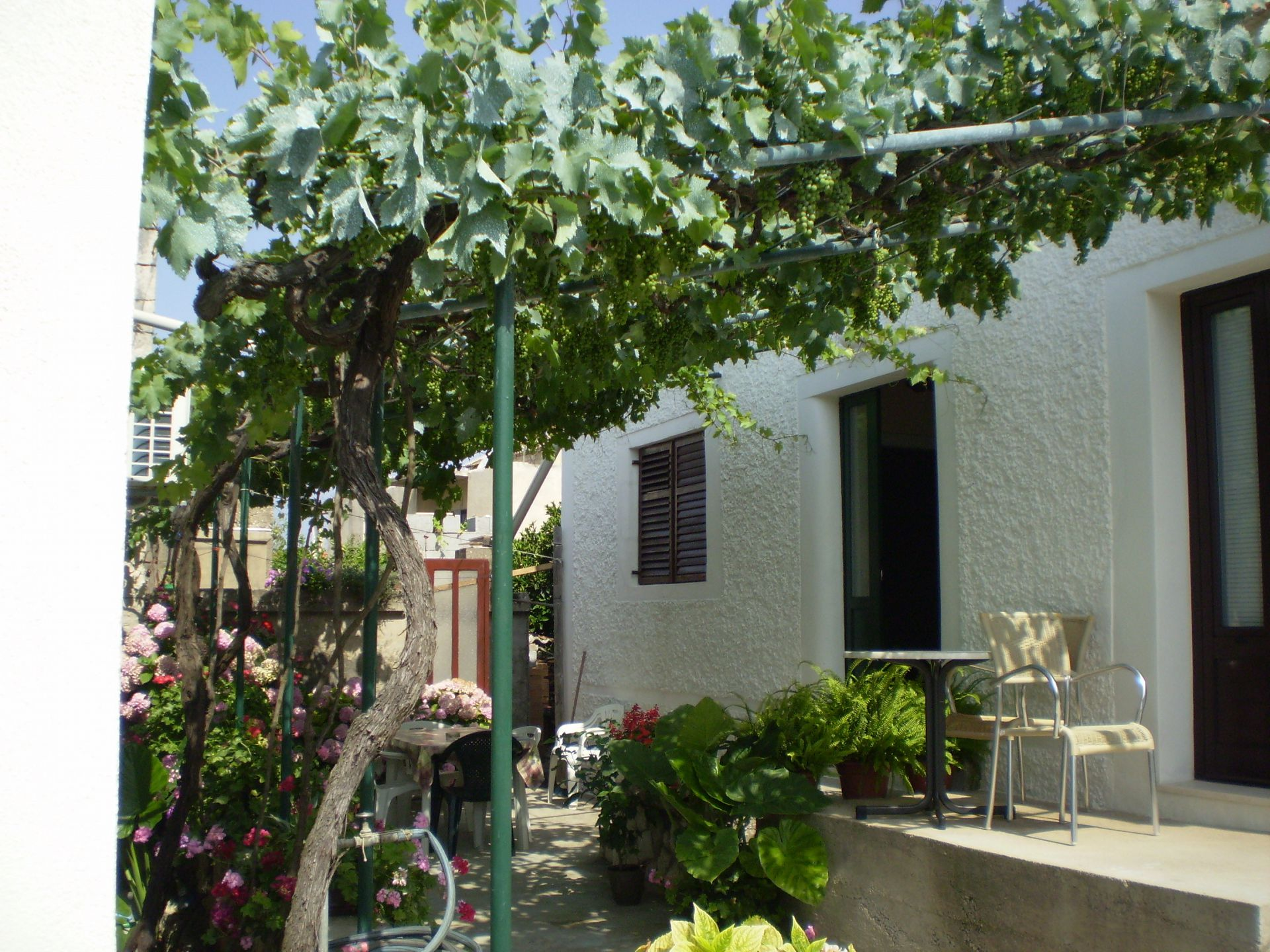 00703SUCU - Sucuraj - Holiday houses, villas Croatia