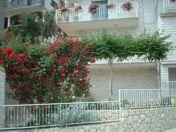 35693 - Сегет Доньи - Апартаменты Хорватия