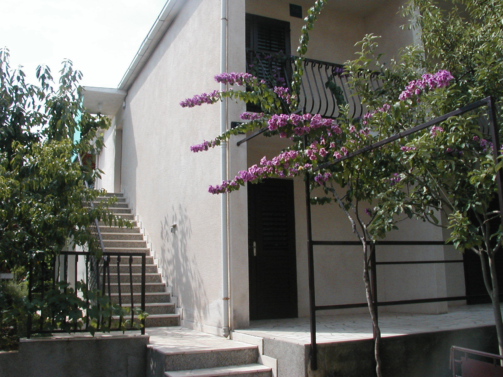 8227 - Supetar - Apartments Croatia