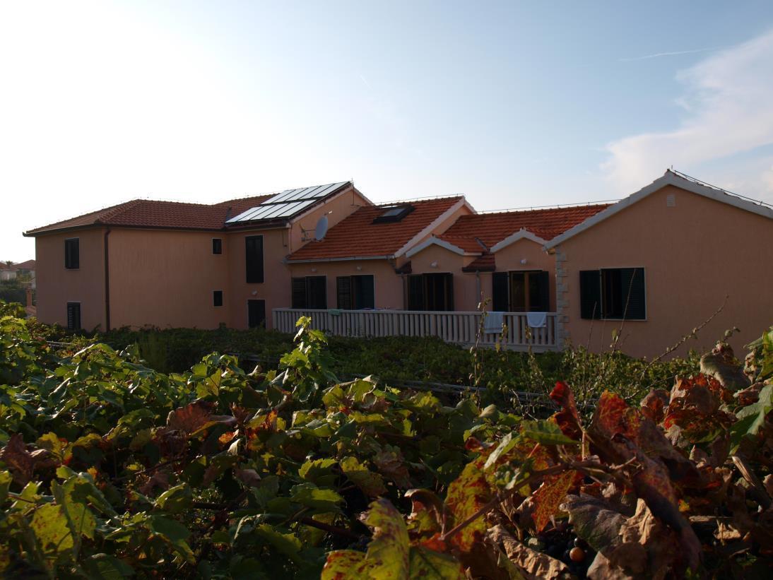 36913 - Postira - Appartamenti Croazia
