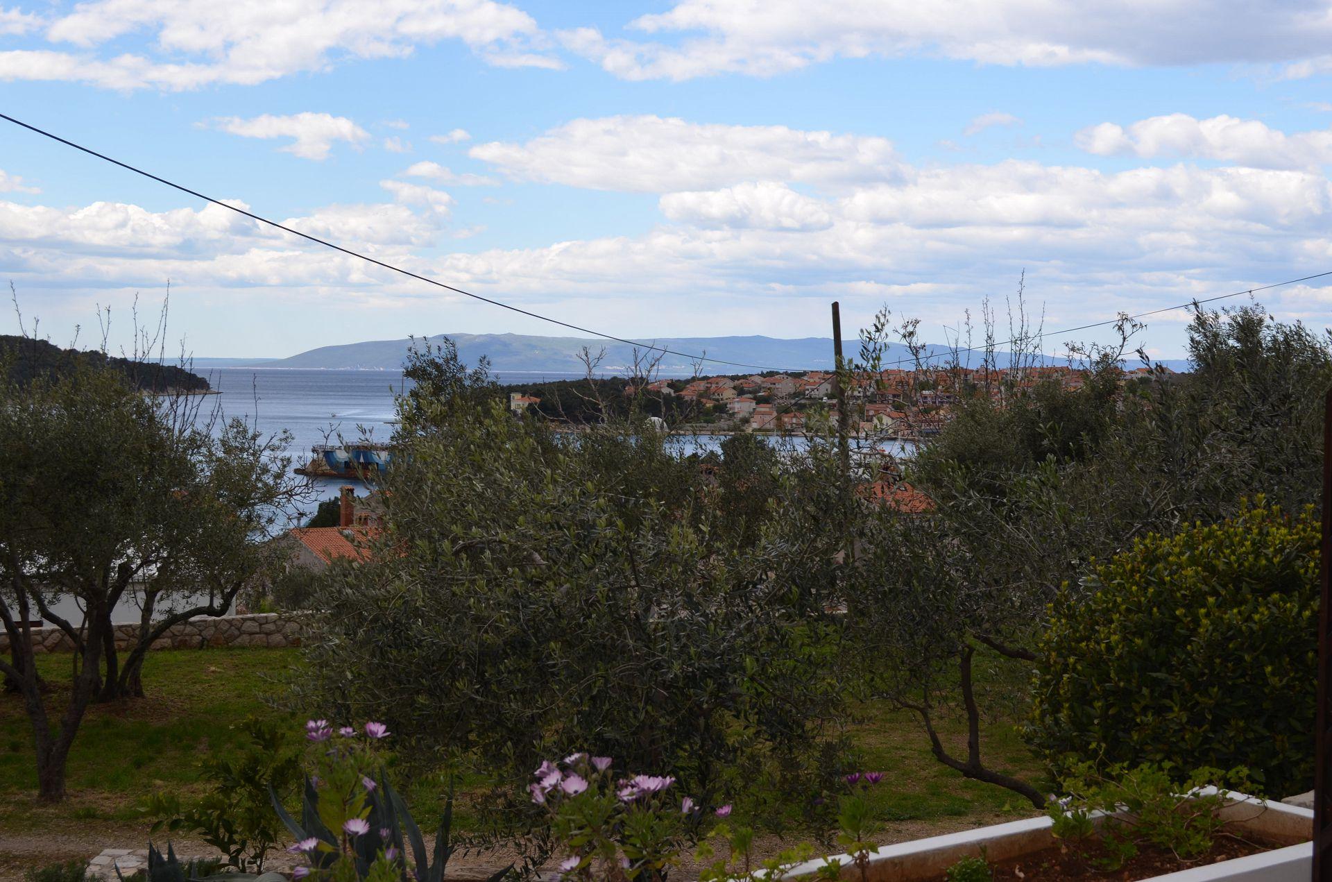 2337  - Cres - Apartmaji Hrvaška - pogled