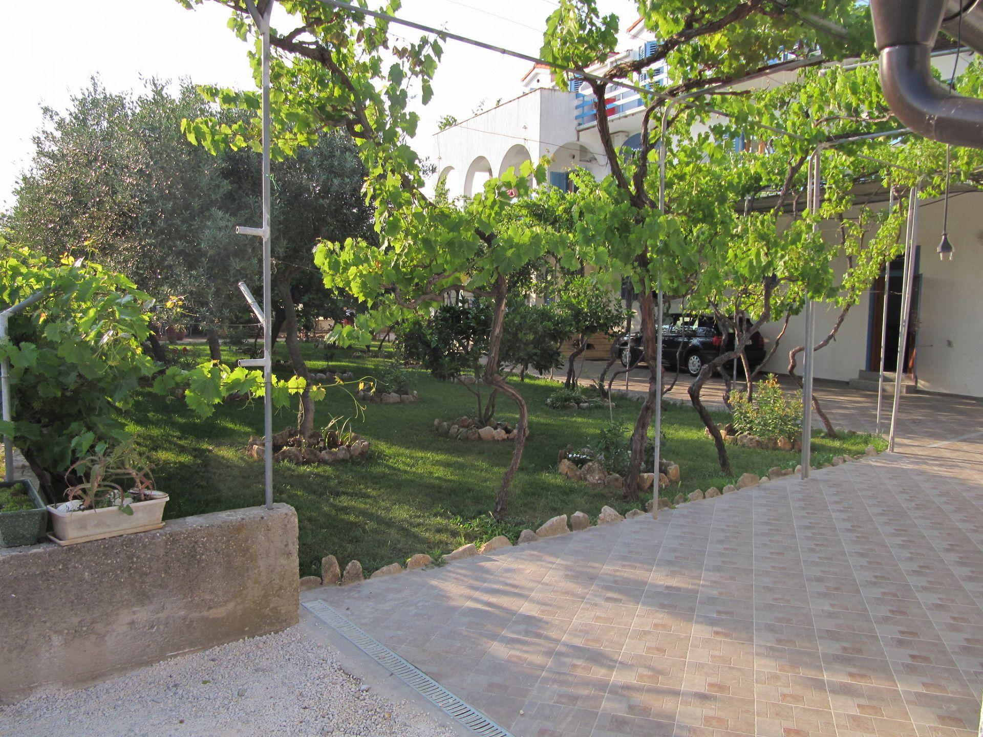 003SUCU  - Sucuraj - Appartementen Kroatië - tuin (huis en omgeving)