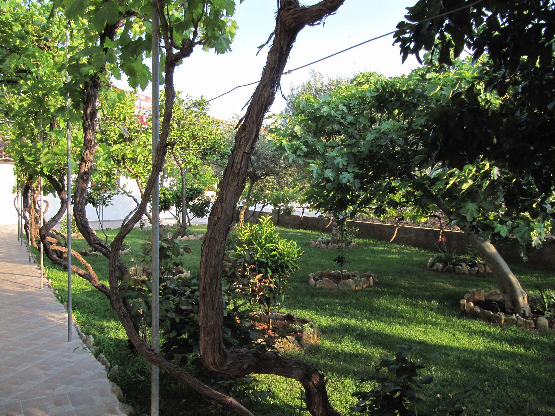 003SUCU  - Sucuraj - Appartementen Kroatië - groen (huis en omgeving)