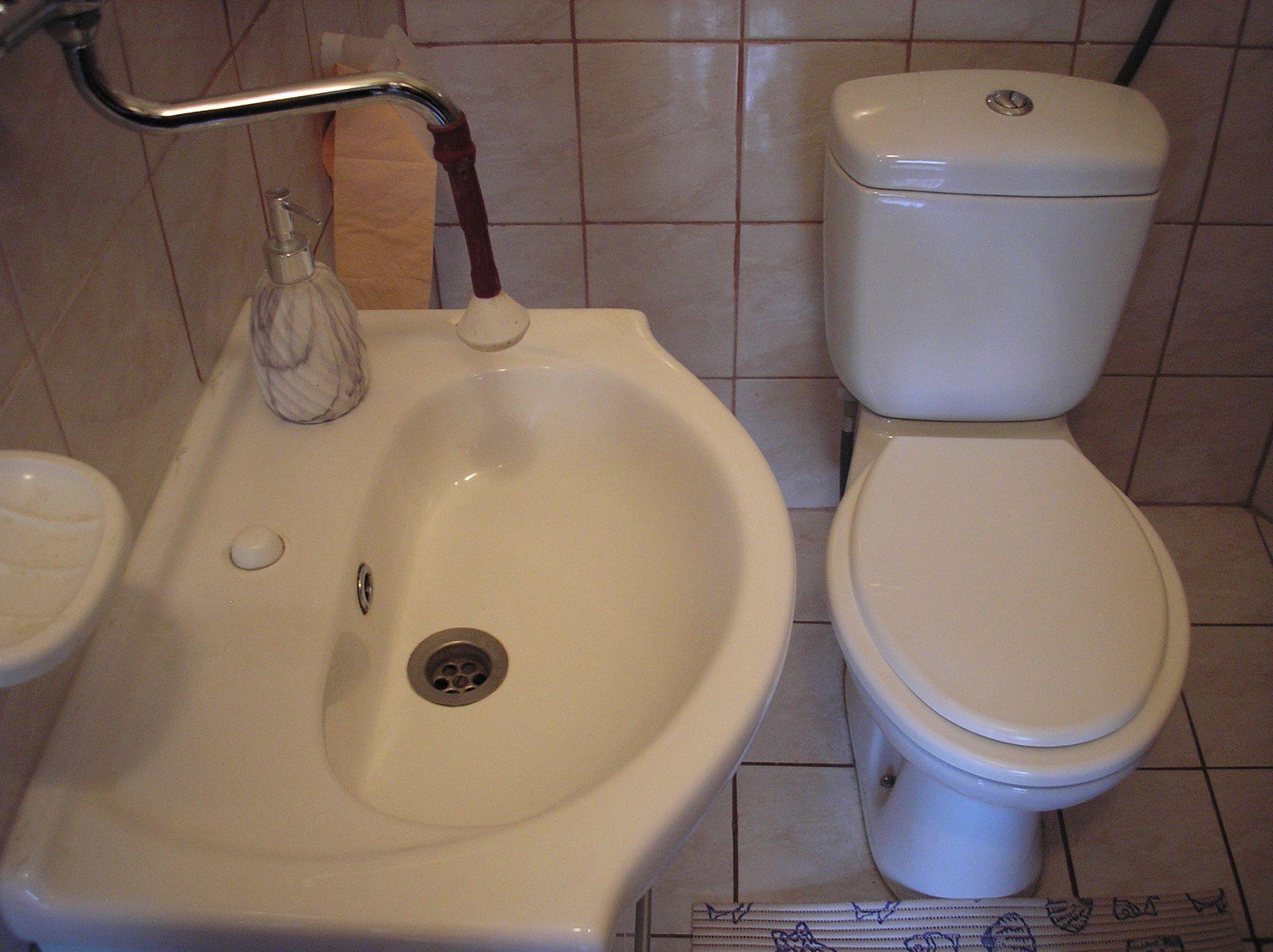 Zvonkic - Aljmas - Ferienwohnungen Kroatien - R4(2+2): Badezimmer mit Toilette