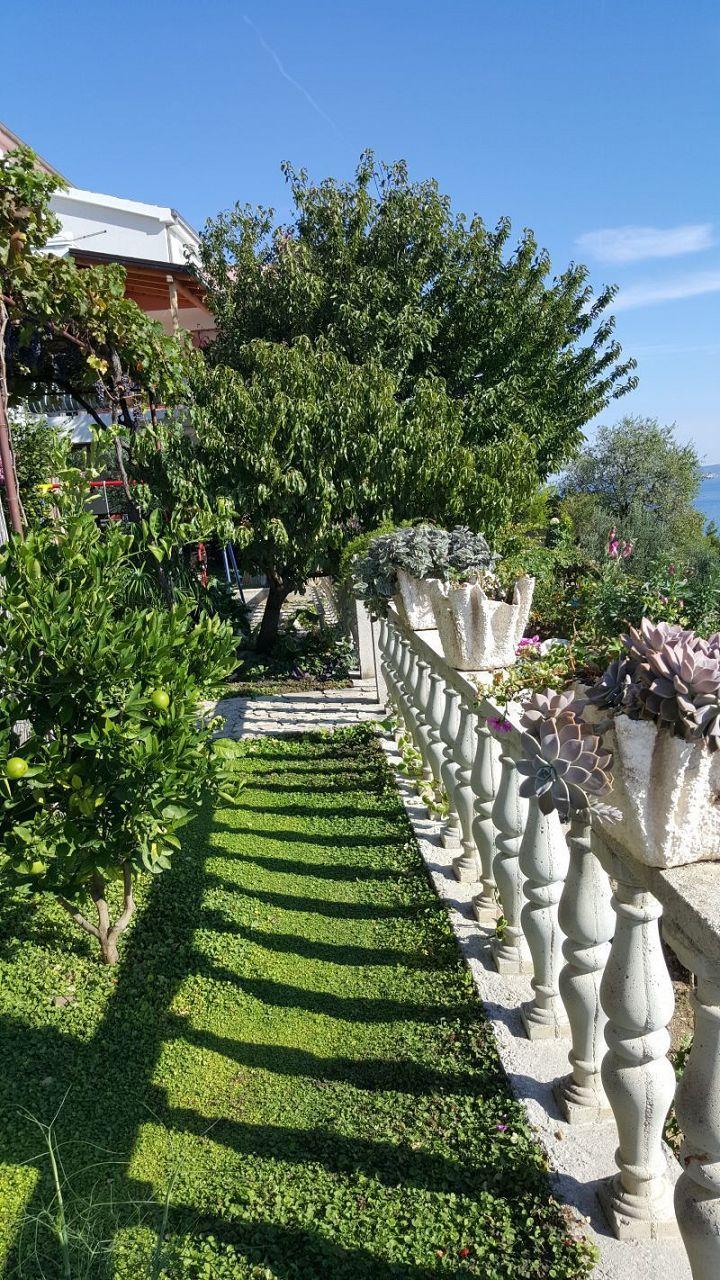 Nina - Celina Zavode - Appartementen Kroatië - tuin