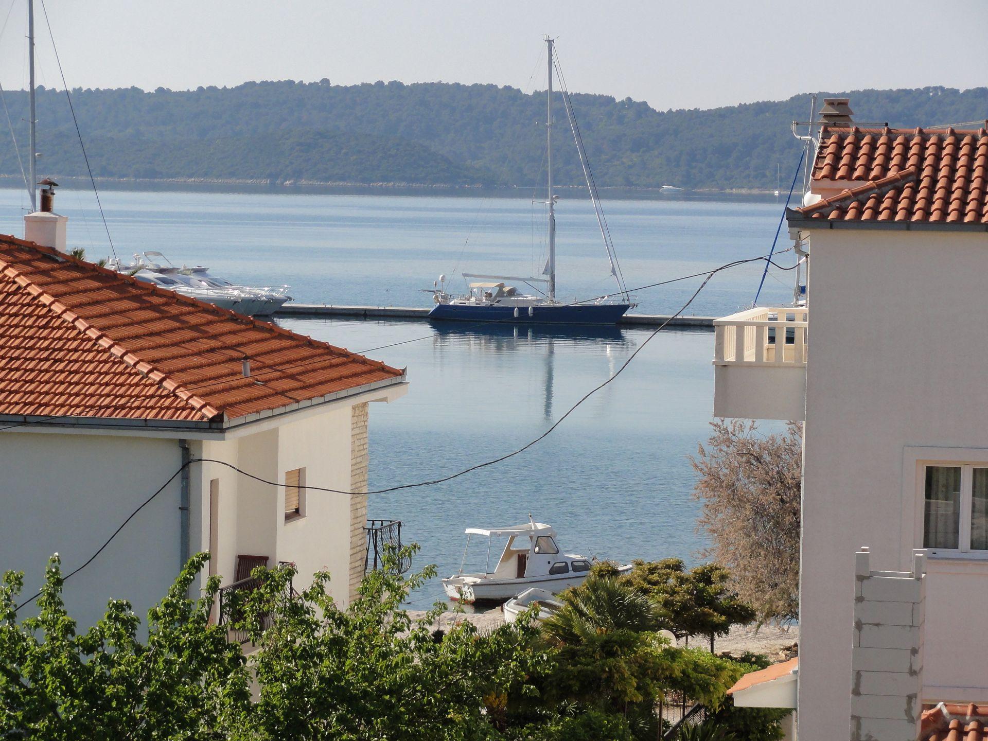 Olive tree - Seget Donji - Appartementen Kroatië