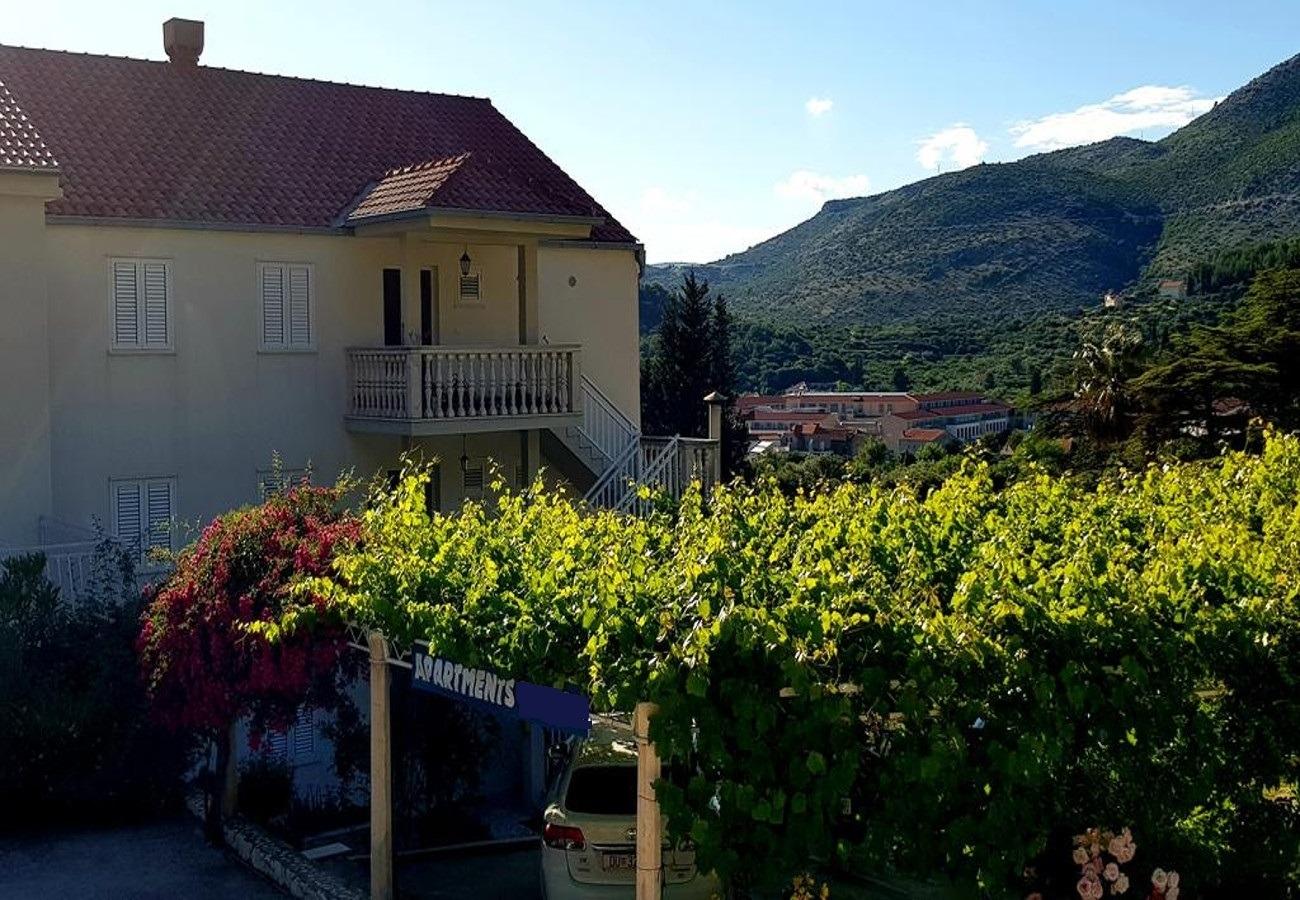 Red & Blue - Slano - Appartementen Kroatië