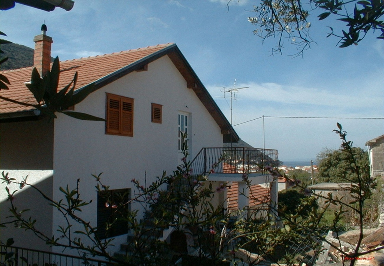 Apartments, , Trpanj (Pelješac) - Apartments  Vido - 150 m from beach: