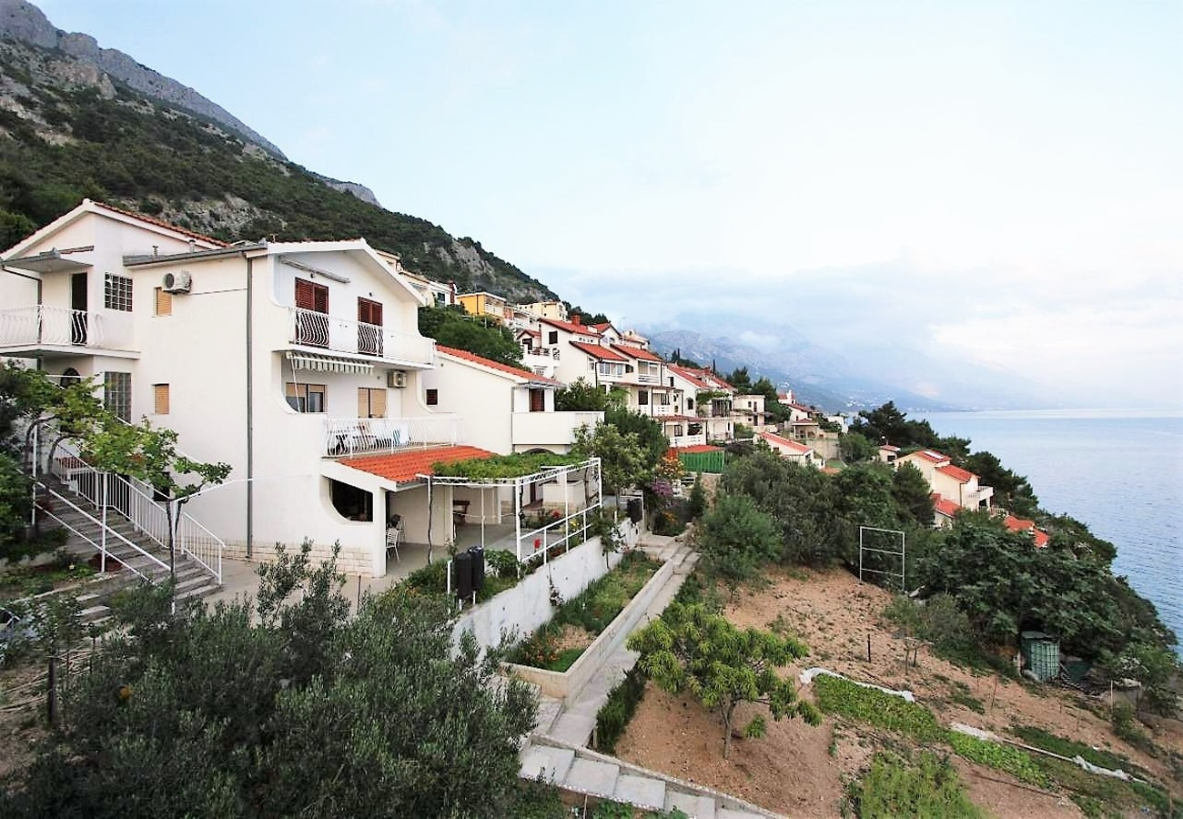 Apartments, Pisak, Riviera Omiš  - Apartments  Šera - 50 m from beach: