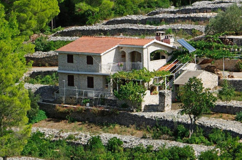 - Zátoka Tankaraca (Vela Luka) - Ubytování v zátokách