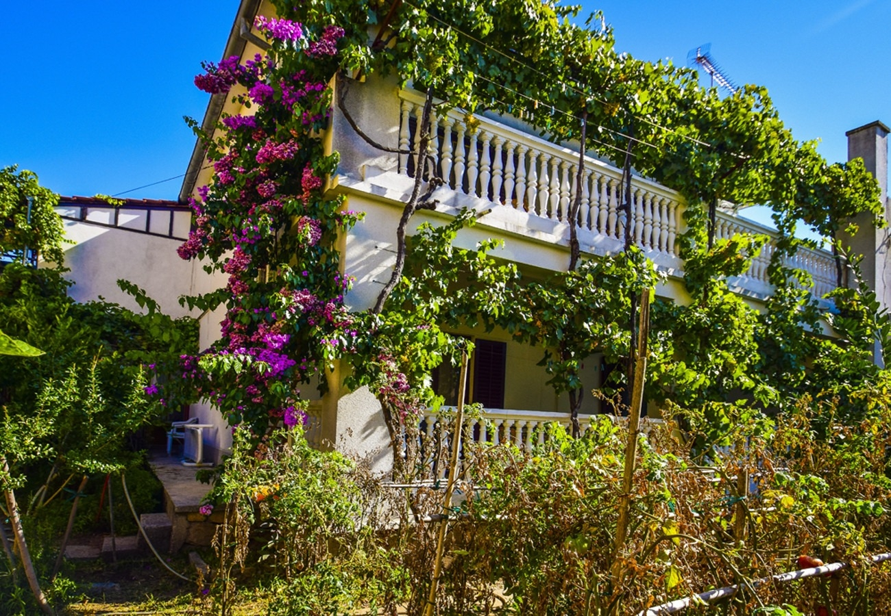 Apartments, Vodice, Vodice and surroundings - Apartments  Snježa - green house: