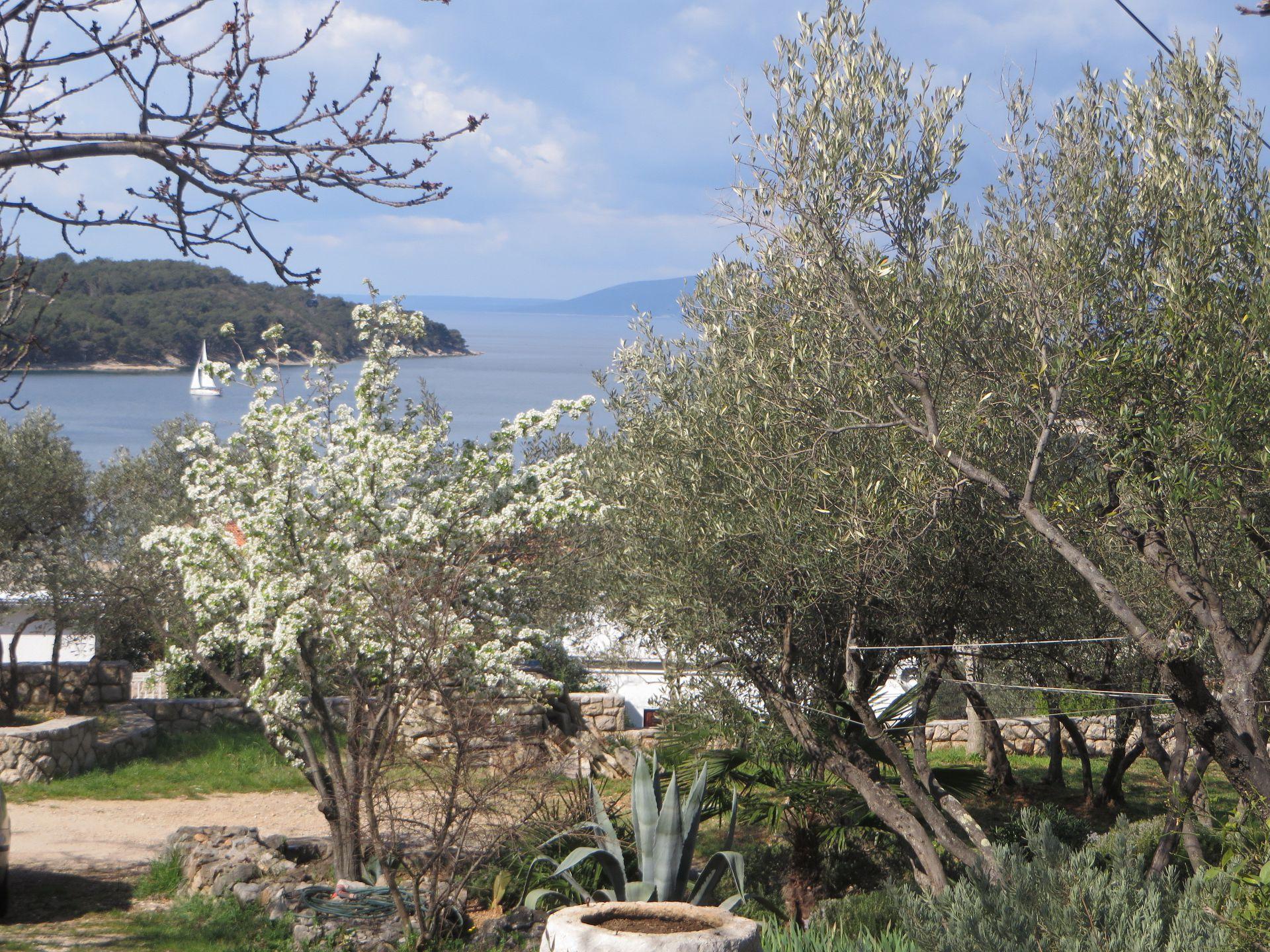 Appartement de vacances P&P A1(2+2) - Cres (742770), Cres (Stadt), Île de Cres, Kvarner, Croatie, image 10