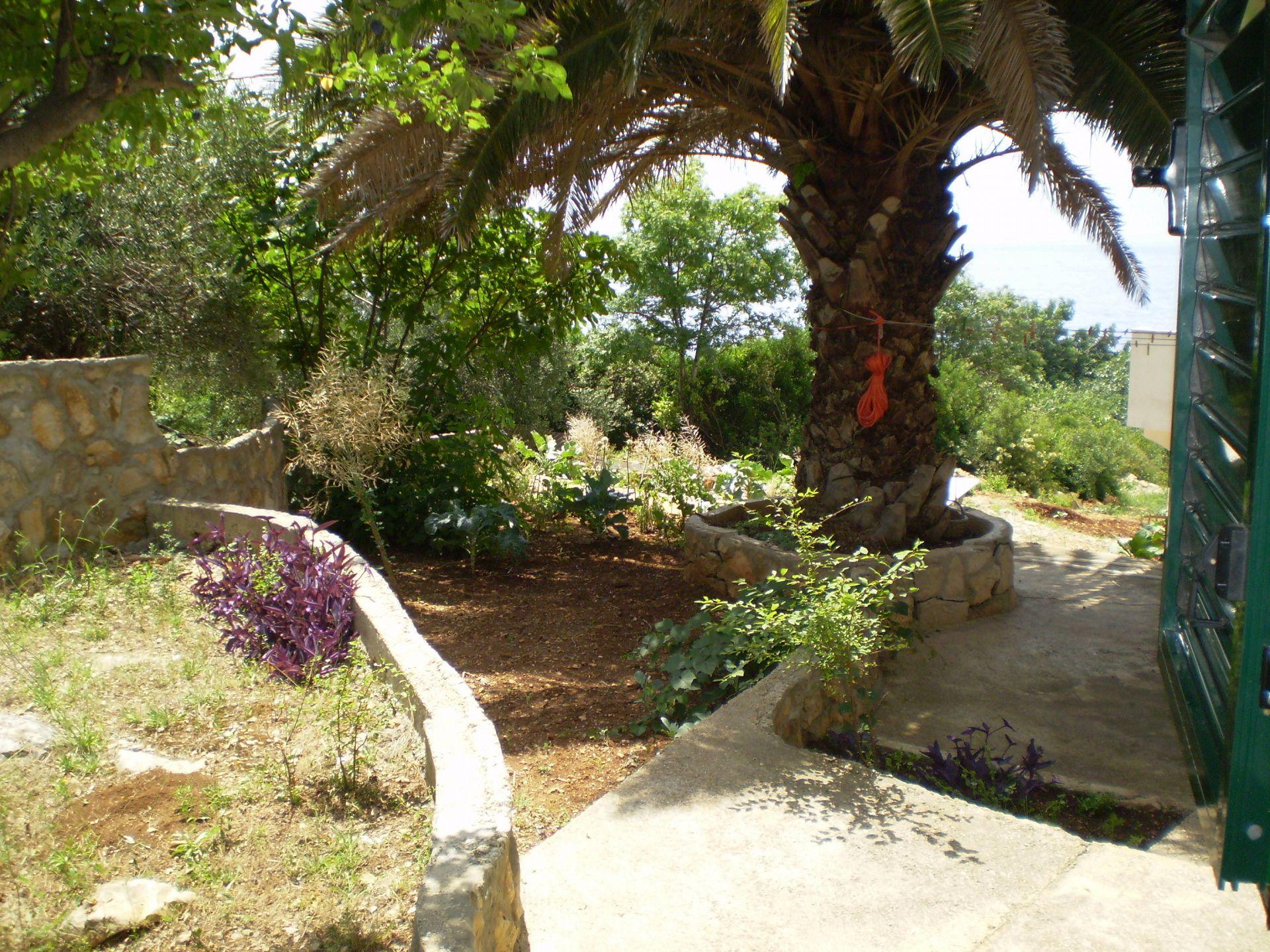 Ferienwohnung Nada A2(8) - Sucuraj (742532), Sucuraj, Insel Hvar, Dalmatien, Kroatien, Bild 5