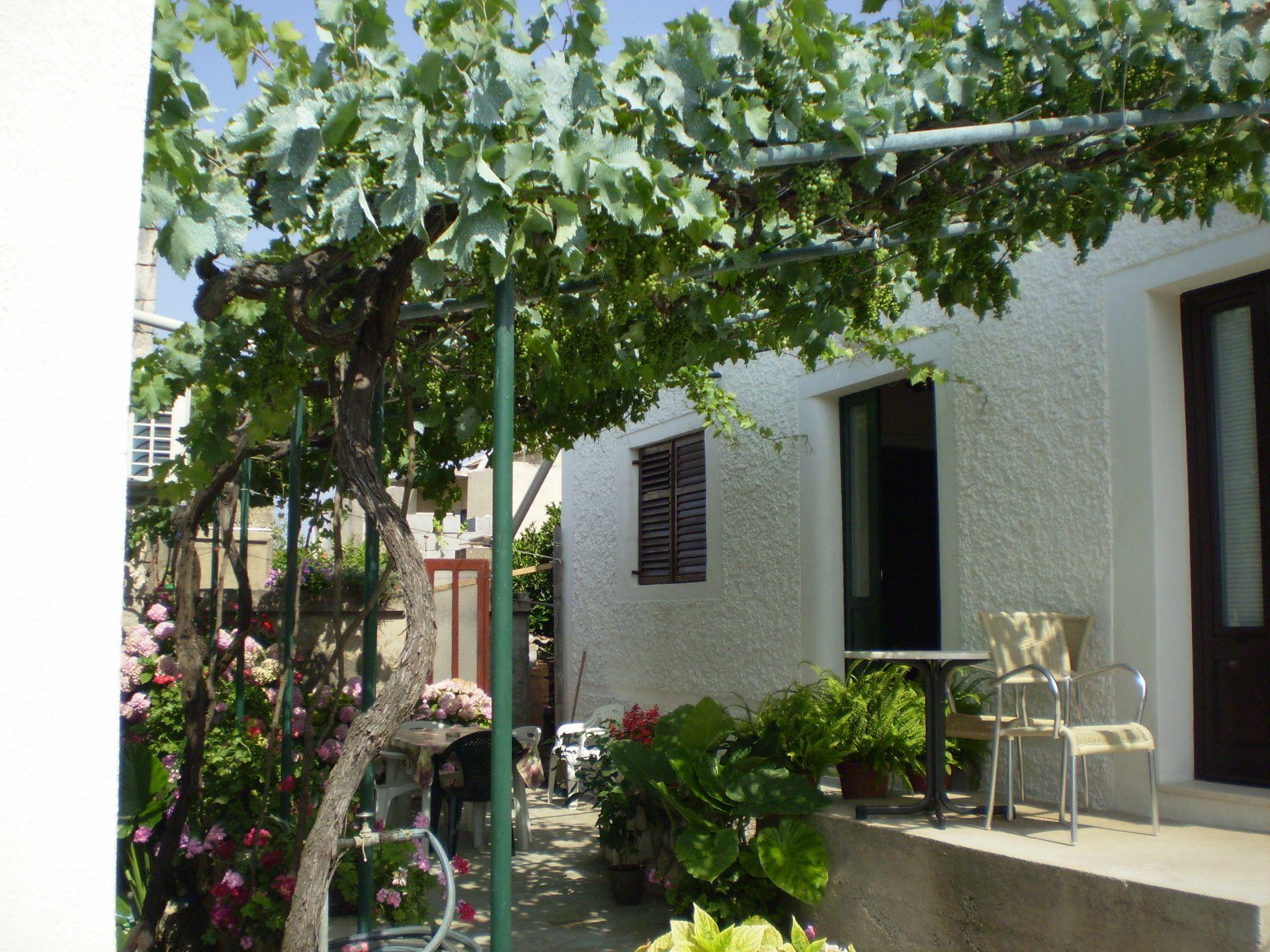 Ferienhaus Smi H1(4+1) - Sucuraj (742077), Sucuraj, Insel Hvar, Dalmatien, Kroatien, Bild 2