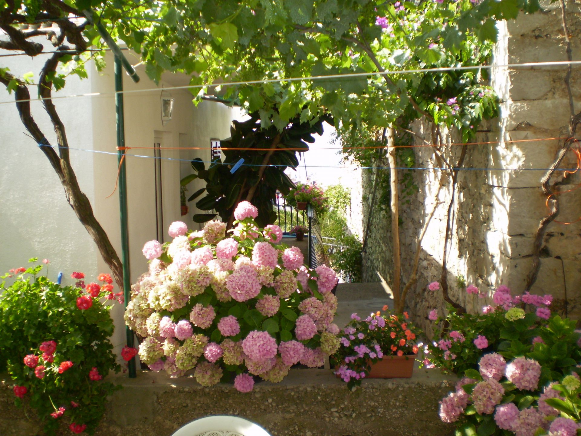 Ferienhaus Smi H1(4+1) - Sucuraj (742077), Sucuraj, Insel Hvar, Dalmatien, Kroatien, Bild 4