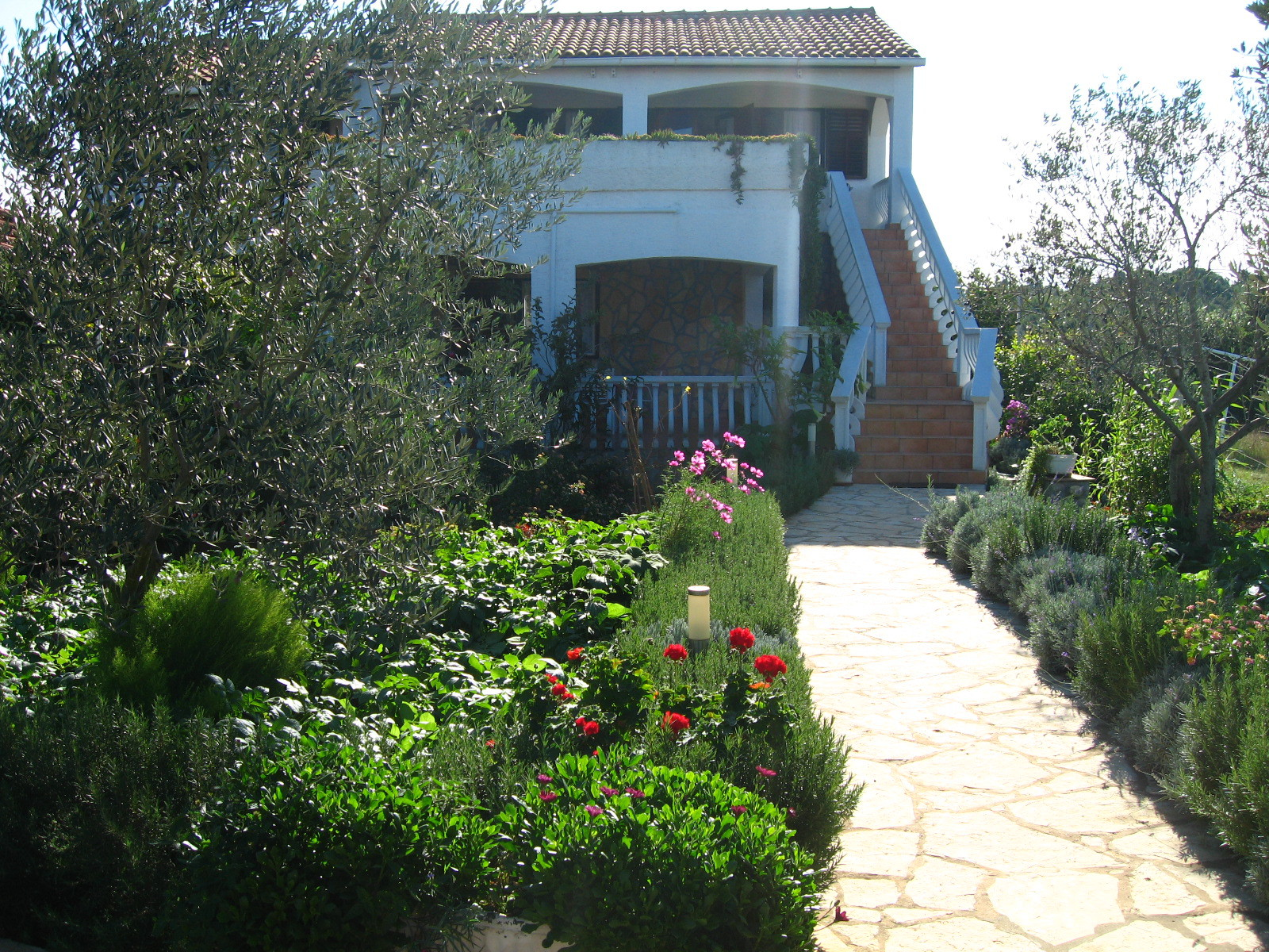 Ferienwohnung Lado SA1(2+1) - Muline (741846), Ugljan, Insel Ugljan, Dalmatien, Kroatien, Bild 2