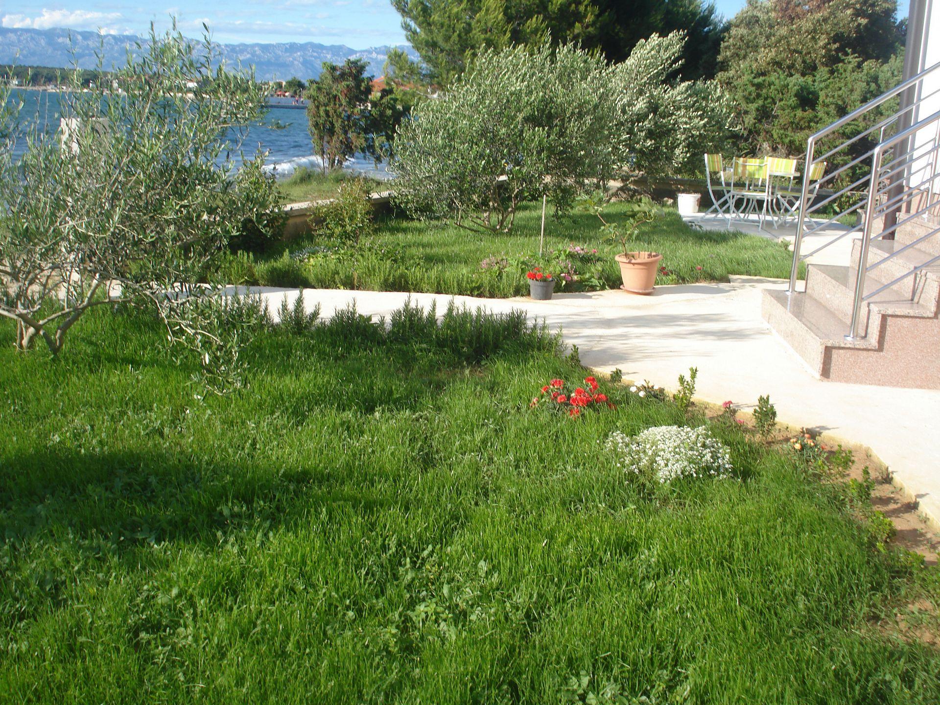 Ferienwohnung 34940 SA Mali (2+1) - Zaton (Zadar) (930352), Zaton, , Dalmatien, Kroatien, Bild 6